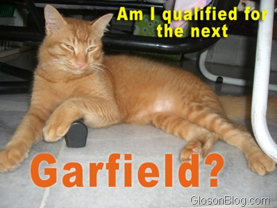 orange-garfield
